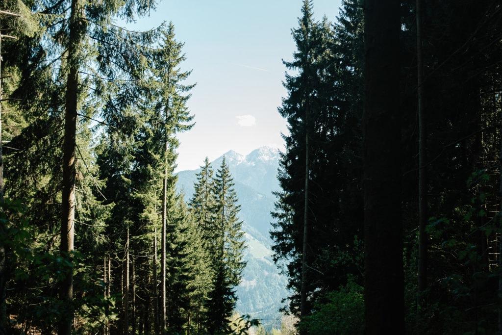 Hochzeitsfotograf Südtirol - hochzeit meran st valentin kirche succ88dtirol 039